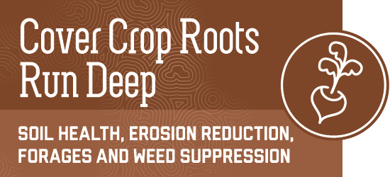 soil health, erosion reduction, forages and weed suppression