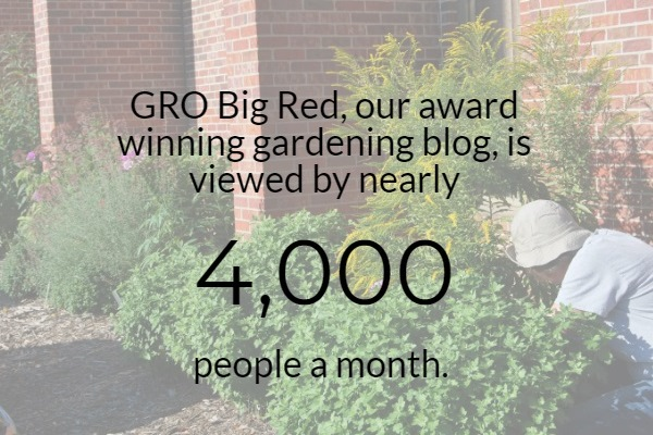 Gro Big Red Infographic
