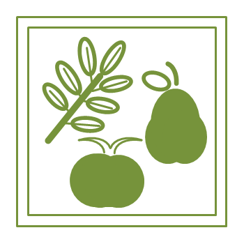 Fruits, Vegetables, and Herbs Icon