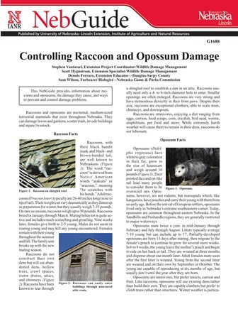 Controlling Raccoon and Opossum Damage (G1688)