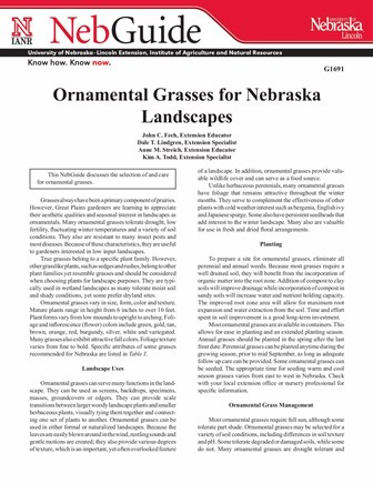 Ornamental Grasses for Nebraska Landscapes (G1691)
