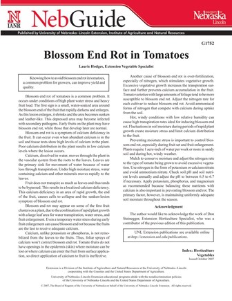 Blossom End Rot in Tomatoes (G1752)