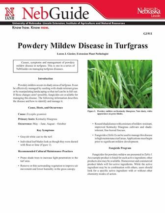 Powdery Mildew Disease in Turfgrass (G1911)