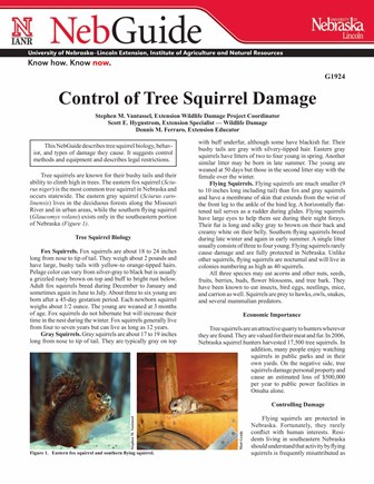 Control of Tree Squirrel Damage (G1924)