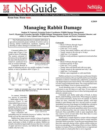 Managing Rabbit Damage (G2019)