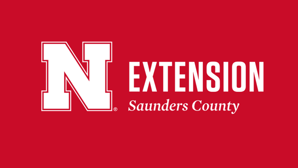 Extension in Saunders County
