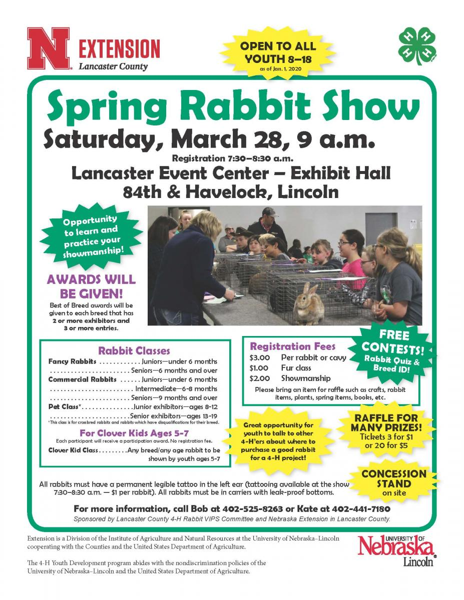 Spring Rabbit Show Flyer