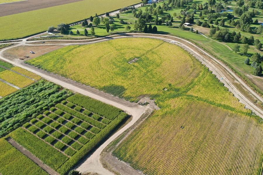 aerial view of the plot at the Panhandle Research and Extension Center where the Subsurface Drip Irrigation (SDI) system has been installed