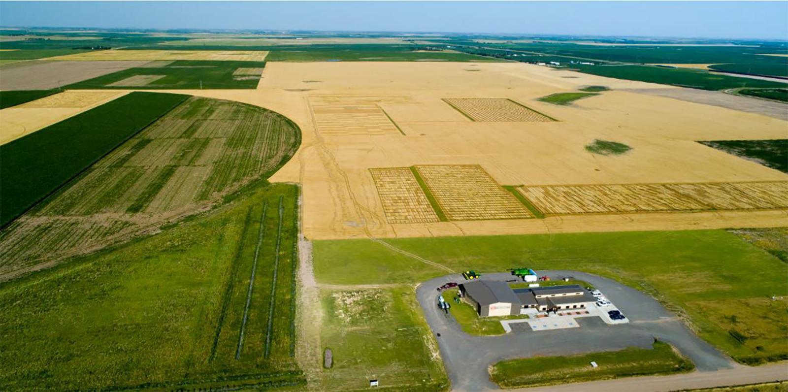 Henry J. Stumpf International Wheat Center